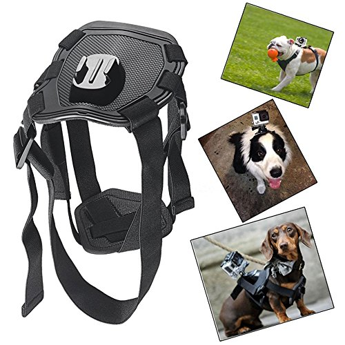 [Dog Fetch Harness Adjustable Chest Strap Shoulder Belt Mount Action Camera GoPro Accessories For Go Pro Hero 4 3 2 SJ4000 WIFI Sport] (Leg Amputee Halloween Costumes)
