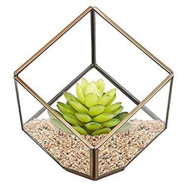 HOMEIDEAS Modern Clear Glass Metal Faceted Tabletop Geometric Polyhedron Terrarium Box,Decorative Succulent Plants Holder 6 x 6 x 10 Inches(Brass)