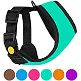 CollarDirect Soft Mesh Dog Harness Neoprene Puppy Padded Vest Adjustable Outdoor Pet Harnesses for Small and Medium Dogs Pink Blue Purple Orange (XS, Turquoise)