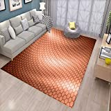 Abstract Bath Mats Carpet Hexagonal Comb Mesh Pattern with Abstract Wave Motion Effect Geometric Image Print Door Mats for Inside Non Slip Backing Pale Rust