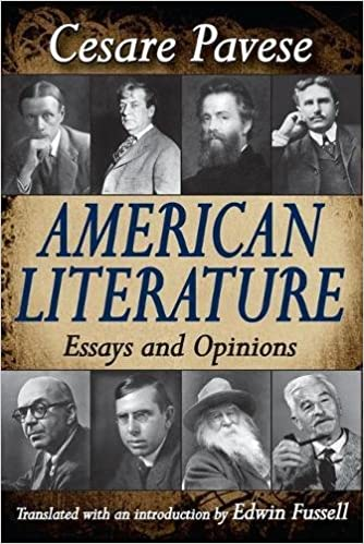 com american literature essays and opinions  american literature essays and opinions 1st edition