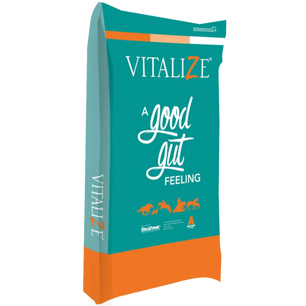 Biozyme Inc Vitalize Equine Free Choice 50