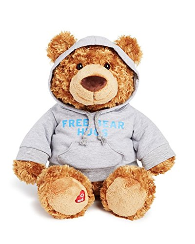 Bloomingdales Gund Little Brown Stuffed Animal Bear Holiday Bear 2016 Free Bear Hugs Limited Addition