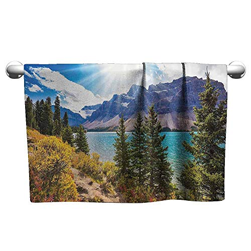DUCKIL Fancy Hand Towels Landscape National Park Banff Canadian Rockies Mountain Trees Glacial Lake Sunny Sky Custom Bath Sheet 23 x 8 inch Aqua Mauve Green