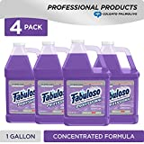 FABULOSO Professional All Purpose Cleaner & Degreaser, Lavender, Concentrated Formula, Bathroom Cleaner, Toilet Cleaner, Floor Cleaner, Glass Cleaner, Washing Machine and Dishwasher Surface Cleaner, Mop Cleanser, Kitchen Pots and Pans Degreaser, 1 Gallon