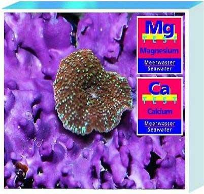 Tropic Marin atm28130 sal Calcio y Magnesio Kit de prueba para Acuario: Amazon.es: Productos para mascotas