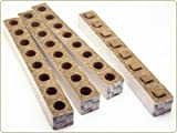 GroDan 3 inch Rock Wool Transplanting Cubes x 8