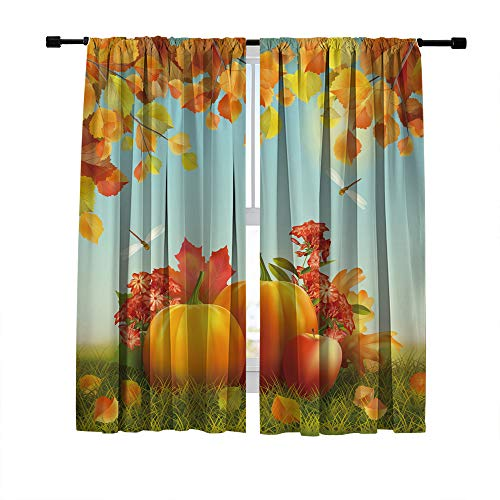 (DUISE Polyester Curtain, Rod Pocket Blackout Window Curtains, Autumn Harvest Season, Ripe Pumpkin, for Living Room Bedroom Kitchen Light Blocking Curtains, 2 Panels Set, 108W X 63L Inches)