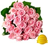 Flower Delivery - 25 LIGHT PINK PREMIUM FRESH ROSES. FREE SHIPPING, FREE GIFT MESSAGE by Spring in the Air Luxury Roses.