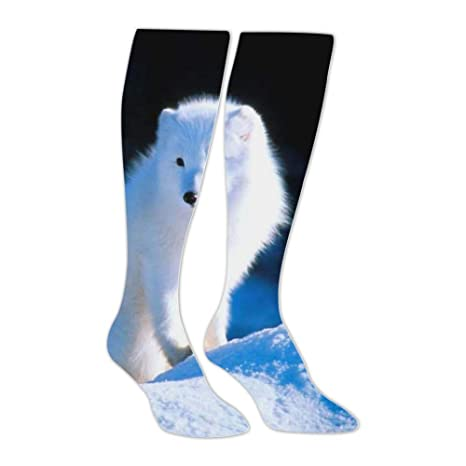 63afc7dcb Amazon.com: Knee High Stockings Like Arctic Fox Long Socks Sports Athletic  for Man and Women: CARRINGTONwila