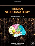 Human Neuroanatomy 1st Edition by Augustine, James R. (2005) Hardcover