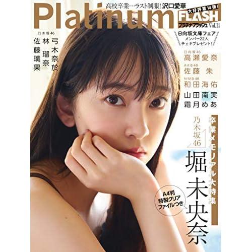 Platinum FLASH Vol.14 表紙画像