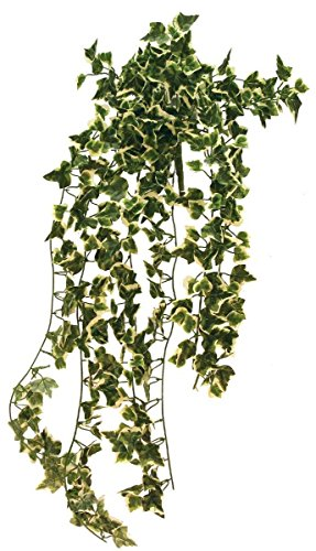 Ivy Cascading Silk Plant - Classic Greenery Artificial Silk Cascading 24