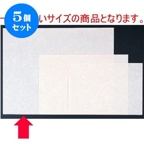 5個セット 和紙マット 吹寄せ(100枚単位)(大) [50 x 39cm] 紙 (7-158-6) 料亭 旅館 和食器 飲食店 業務用   B01LX6TX26
