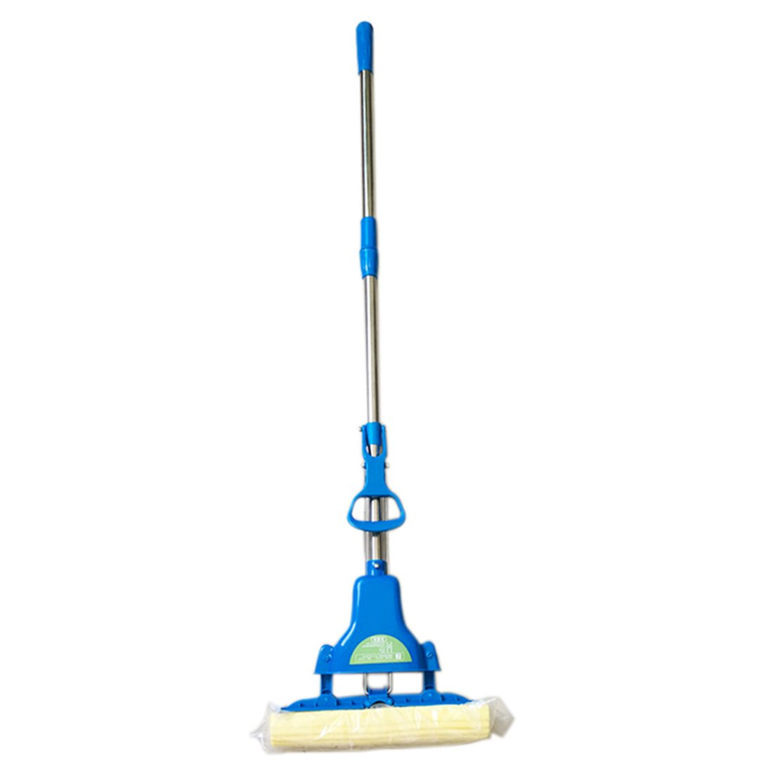 Dingtuo Absorbent Floor Mop with Stainless Steel Rod for Window Bathroom Glass Blue