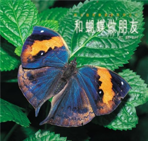 and-butterfly-friends-with-paperback-traditional-chinese-edition