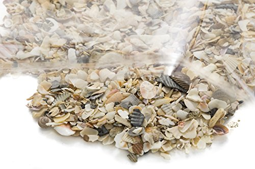 1 lb Crushed Seashells | Tiny Miniature Crushed Seashell Assorted Mix |1 Pound Crushed Shells for Decoration Terrarium Aquariums and Fairy Gardens and Vase Filler | Nautical Crush Trading TM