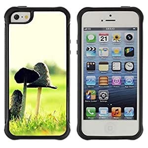 fashion Case Plant Nature Forrest Flower 12 Apple Iphone 5c hjbrhga1544