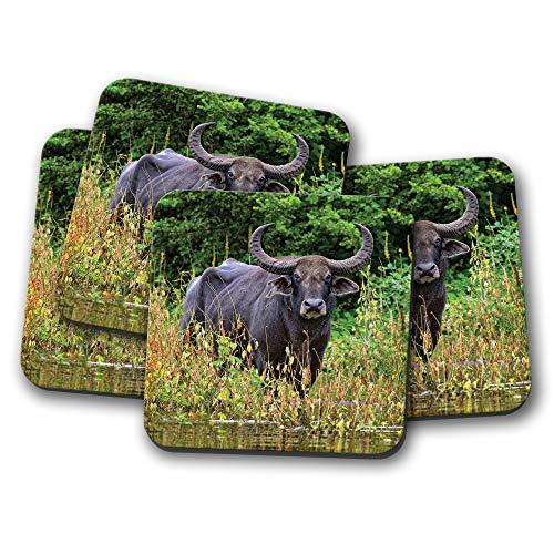 Price comparison product image 4 Set - Beautiful Water Buffalo Coaster - Wild Animal Nature Cool Gift 12766