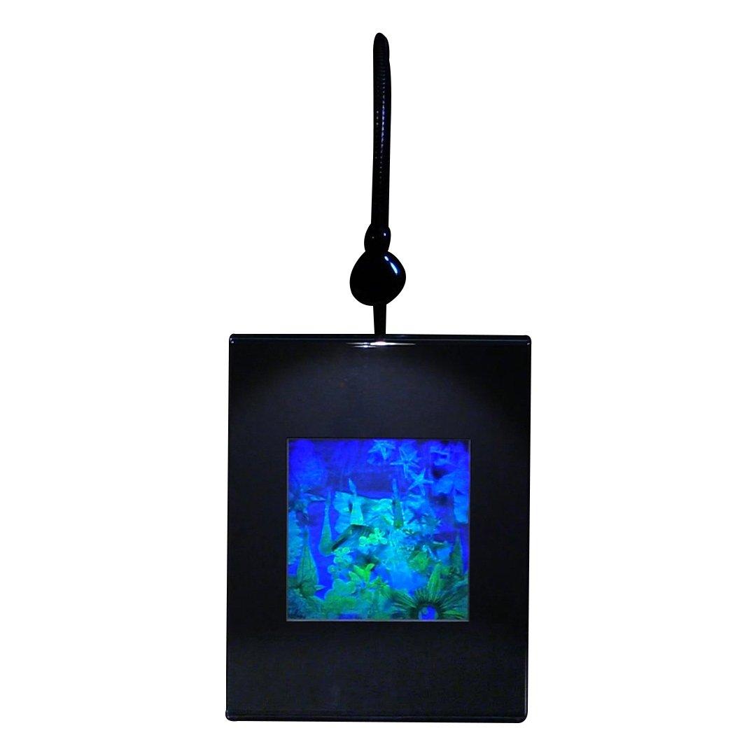 【国際ブランド】 3d海底ホログラム画像 Desk、CollectibleエンボスタイプFilm B07B7LBLMG Lighted Desk Lighted Stand Stand, セール 登場から人気沸騰:92b17f8d --- arianechie.dominiotemporario.com