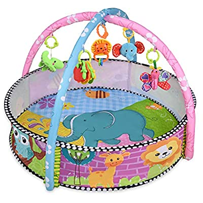 Baby Play Gym, Rainbrace Multi Function Infant Play Mat Activity Gym with Ball Pit ¡