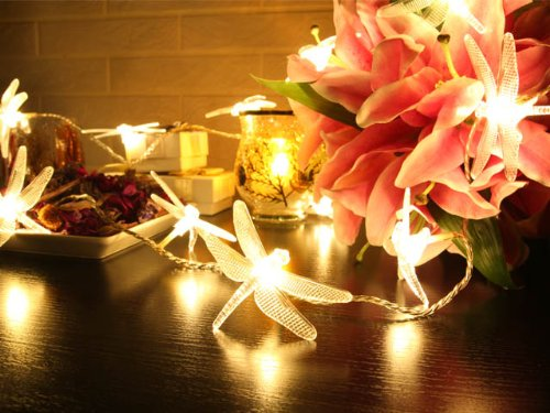 battery operated warm white led string lights with dragonfly christmas lights party lights