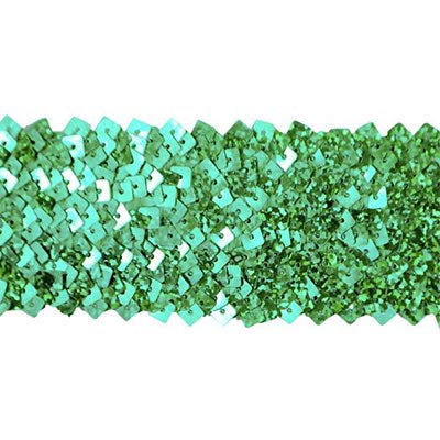 5 Row 1 3/4in Starlight Hologram Square Sequin Stretch Trim Green (Precut 10 Yard) by Expo International Inc.