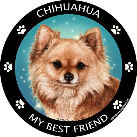 Red Long-haired Chihuahua My Best Friend Magnet -