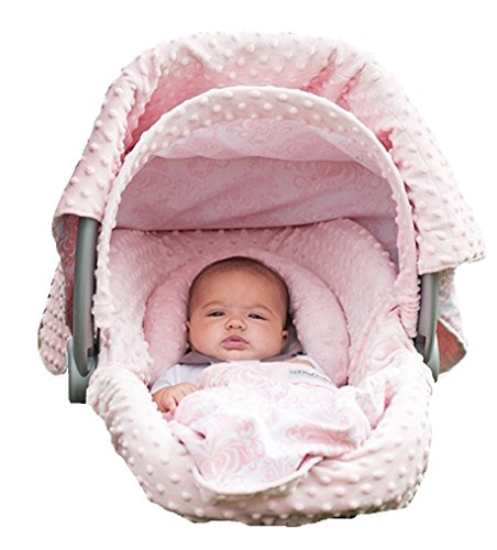 Carseat Canopy Caboodle Angelina Infant product image