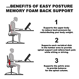 Easy Posture Memory Foam Lumbar Support Cushion - Back Pillow for Office Chair or Car Seat - Gray