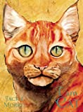 I Am Cat, Jackie Morris, 1847805078