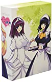 Vol. 1-Zero No Tsukaima: Futatsuki No Kishi