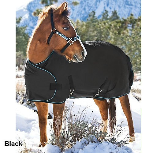 Kensington All Around Adjustable Weanling Horse Blanket, Cha