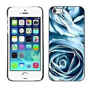 TaiTech / Prima Delgada SLIM Casa Carcasa Funda Case Bandera Cover Armor Shell PC / Aliminium - Rosas azules - iPhone 5 / 5S