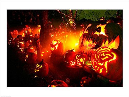 Jack o' Lanterns lit up Roger Williams Park Zoo, RI Laminated Art Print, 40 x 30 inches -