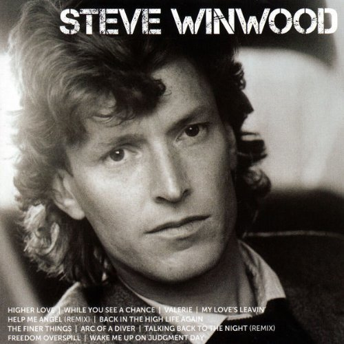 Icon (Revolutions The Very Best Of Steve Winwood)