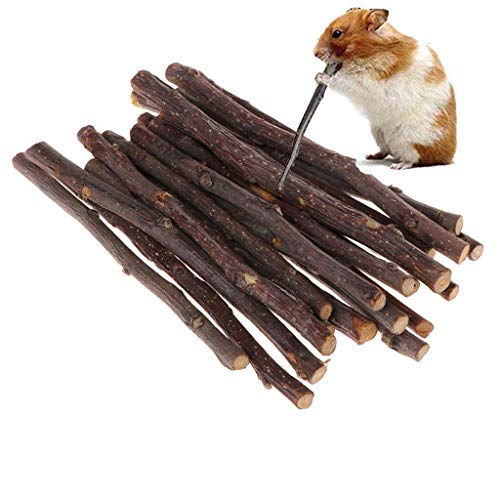 (BiliPili Organic Apple Sticks for Small Animals Chew Toys Chinchilla Guinea Pigs Rabbits Hamsters (100g))