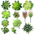 Thatswut Assorted Artificial Succulents Plants -12 Pack - Green Textured Realistic Aloe Faux Succulent Picks Succulent Stems Fake Succulent Bouquet Arrangements Artificial Succulents- Faux Plants