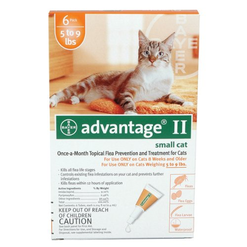 Advantage II (Cat) Feline -Orange 5-9 lbs, 6-pk, My Pet Supplies
