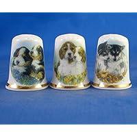 Porcelana China colección de dedales Juego de tres