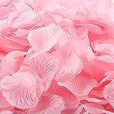 1000 Rose Petals Wedding Decorations, baby pink