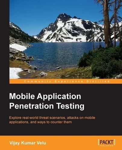 Application developer guide penetration security tester web