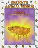 Fleas, Andreu Llamas and Eulalia Garcia, 0836816501
