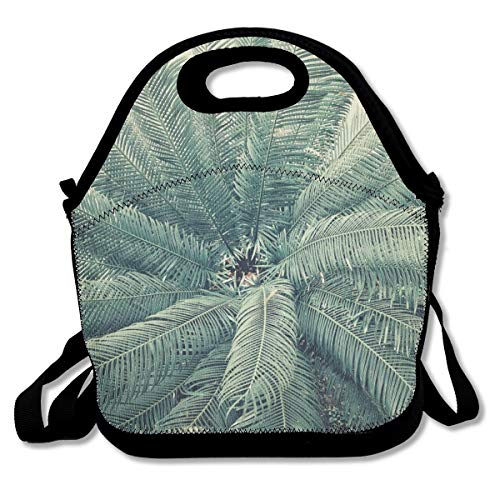 Lcokin Ironwood Has Not Yet Flowered Cute, Thermal,Insulation Lunch Bag - Reusable Work and School Lunch Handbags-Lunch Bags for Women, Men and Children
