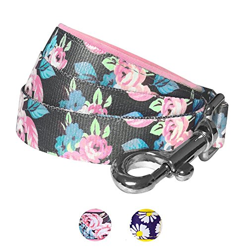 Blueberry Pet 2 Patterns Rose Flower Prints Girly Dog Leash with Soft & Comfortable Handle, 5 ft x 3/4, Medium, Leashes for Dogs