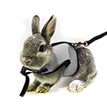 ASOCEA Soft Harness with Lead for Bunny/Kitten (Gray)