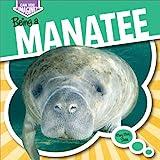 Being a Manatee, Mary Molly Shea, 1482401274