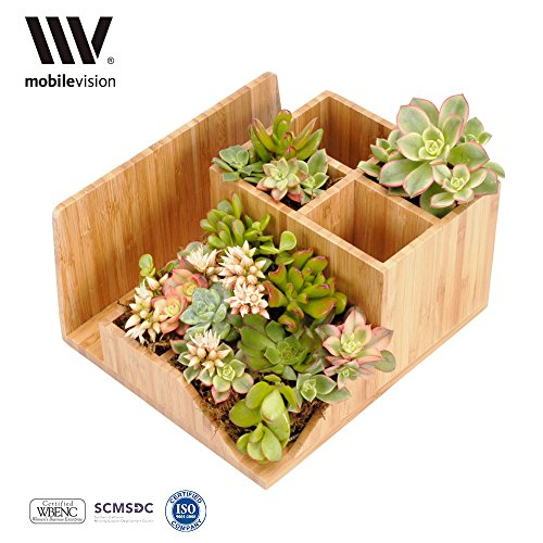 MobileVision Succulent Organizer Employees Assistants
