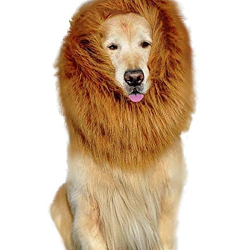 [HTKJ Lion Mane Dog Costume Cute Pet Wig Hat for Large Dog Dress up Halloween Christmas (Brown-L)] (Dog Lion Costume Large)