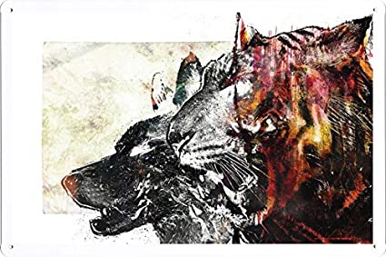 Amazon Com Abstract Sign Wolf Tiger Drawing White Red 170